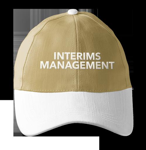 interims-management-binzcom